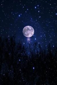 54c3c7f15a391bfc4a5944f6c3b55b5e--starry-night-sky-night-skies